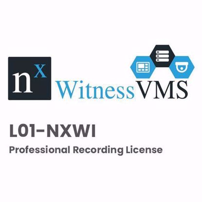 Nx Witness L01-NXWI Professional Recording License
